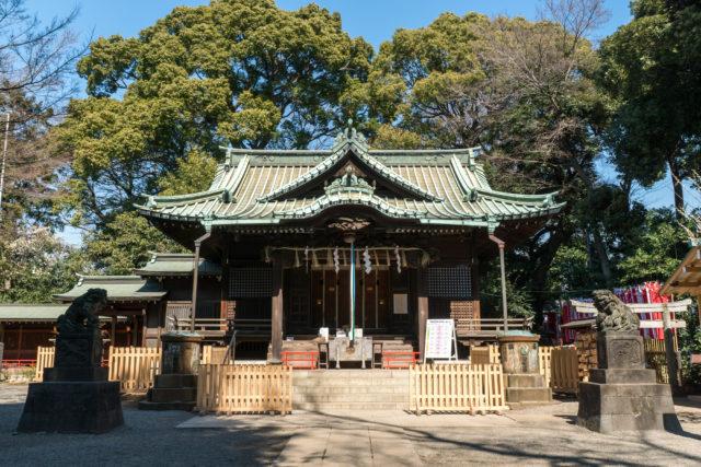 観光業に頼っているだけでは日本の未来は暗いと考えています